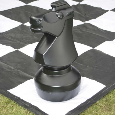 Giant Chess & Draughts